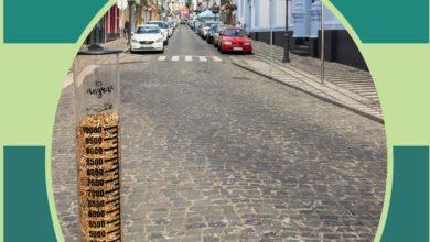 Photo of Campanha Beatas no Chão, Não!